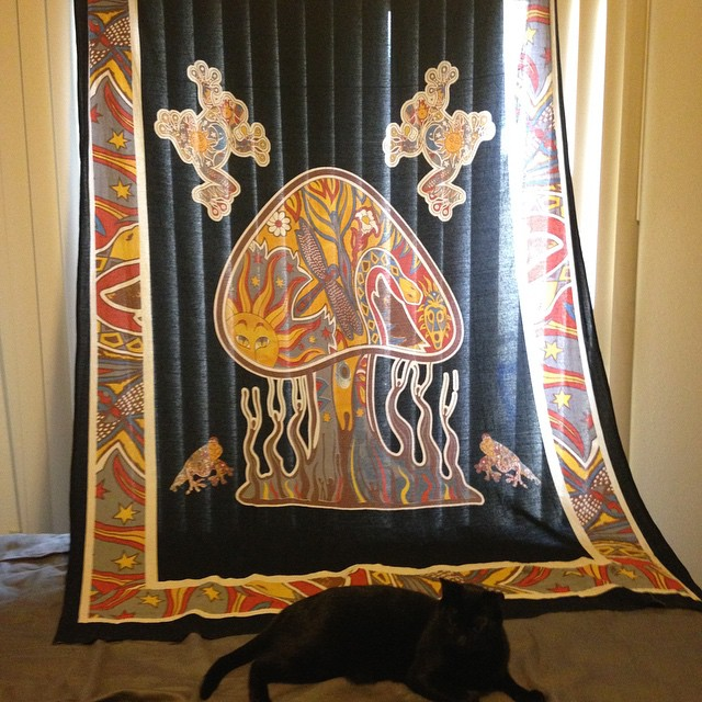 Psychedelic Mushroom Frog Tapestry 27